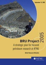 BRU Project - NTNU