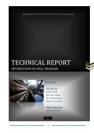 Technical report - NTNU