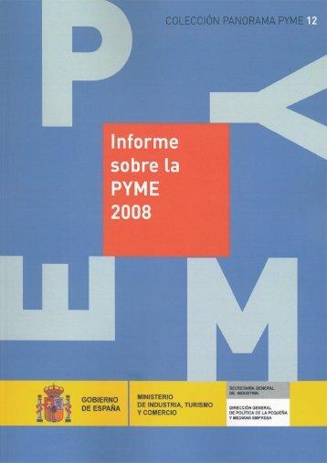 Informe sobre la PYME 2008 (Colección Panorama PYME)
