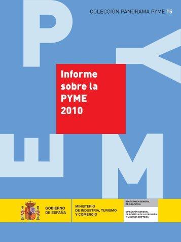 Informe sobre la PYME 2010 - Dirección General de Política de la ...