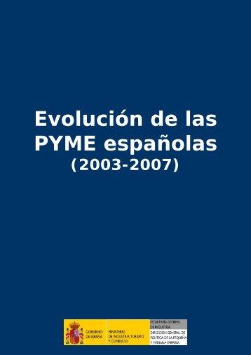 Evolución de las PYME en España 2003-2007 - Dirección General ...
