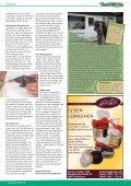 FRANKEN - Seite 5