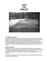 SAVE THE SWALES - Florida Department of Environmental Protection