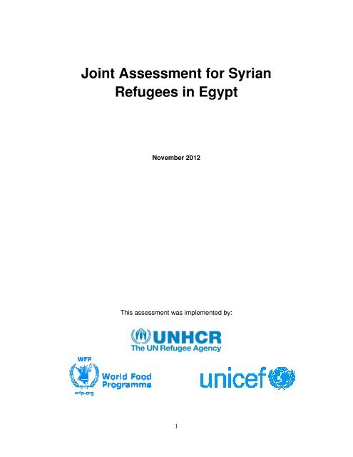 Joint Assessment for Syrian Refugees in Egypt - IRIN