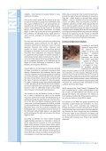 Minorities Under Siege: Pygmies today in Africa - IRIN - Page 6