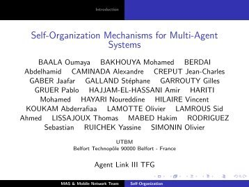 Self-Organization Mechanisms for Multi-Agent Systems - IRIT