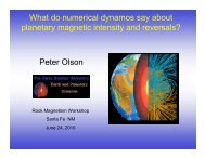 What numerical dynamos say about planetary magnetic field