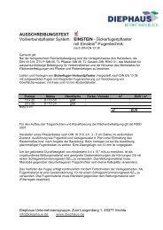 Einstein Sickerfugenpflaster - Diephaus