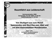 RaL_SS090528_Laufer_web [Schreibgesch-374tzt] - IRS ...