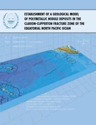 Workshop on the Establishment of a Geological Model of ...