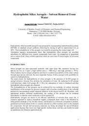 Preparation of Organic Aerogels - ISASF