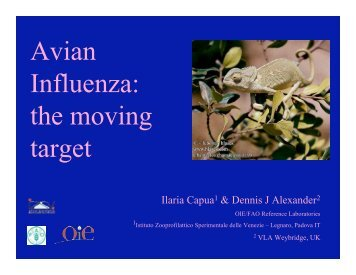 Avian Influenza: the moving target