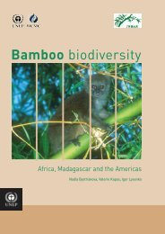 Bamboo 2 cover v7 - International Network for Bamboo and Rattan