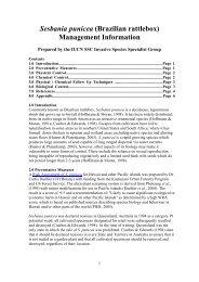 Sesbania punicea - IUCN Invasive Species Specialist Group