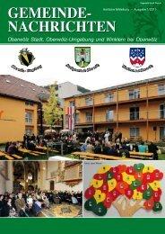 Ausgabe 1/2011 - Steiermark ist super