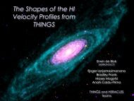 The Shapes of the HI Velocity Profiles of the THINGS Galaxies