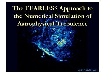 The FEARLESS Approach to the Numerical Simulation of ...