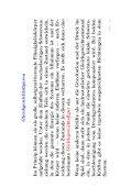 pdf-file - Seite 4