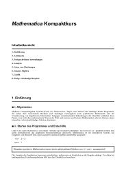 Mathematika-Kompaktkurs, pdf-File