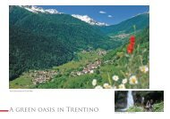 A green oasis in Trentino
