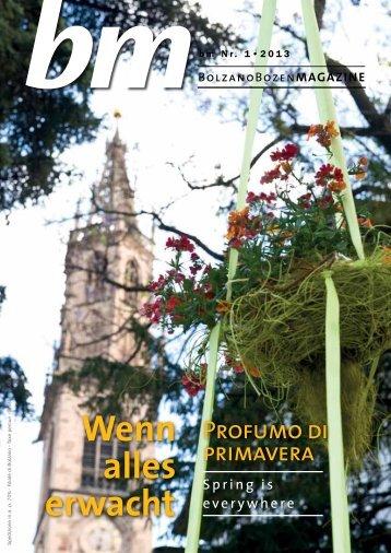 Magazine 2009 - Südtirols Süden