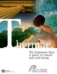 The Euganean Spas