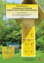 Erzeugung und Nutzung biogener Gase in Baden ... - ITAS - KIT