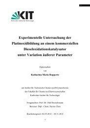 Experimentelle Untersuchung der Platinoxidbildung an einem ...