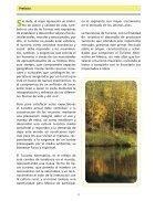 Turismo Alternativo - Page 4