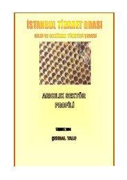 Arıcılık Sektör Profili 2004 - ITO