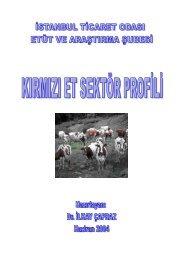 Kırmızı Et Sektör Profili 2004 - ITO