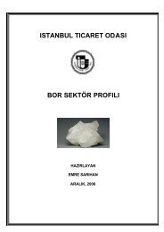Bor Sektör Profili 2006 - ITO