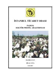 Pamuk Sektör Profil Araştırma Raporu 2003 - ITO