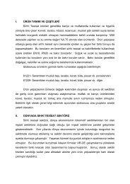 Sıhhi Tesisat Sektör Profili 2003 - ITO