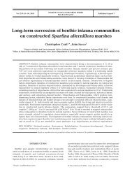 Long-term succession of benthic infauna communities on ...
