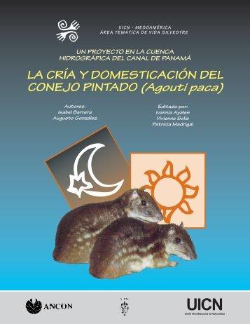LA CRÍA Y DOMESTICACIÓN DEL CONEJO PINTADO ... - IUCN