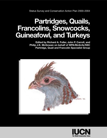 Partridges, Quails, Francolins, Snowcocks, Guineafowl, and Turkeys