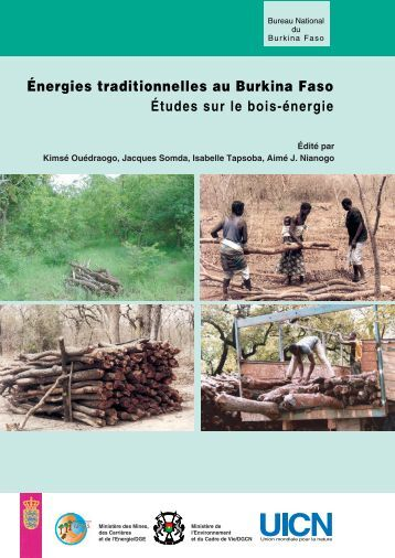 Energies traditionnelles au Burkina Faso - IUCN