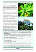 The Economic Value of East Africa's Forests - IUCN - Page 4