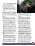 Diversidad biocultural conservada por pueblos indígenas y - IUCN - Page 5