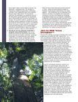 Diversidad biocultural conservada por pueblos indígenas y - IUCN - Page 6