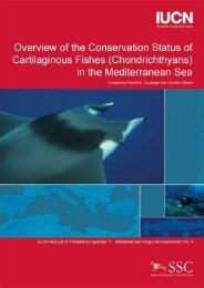 (Chondrichthyans) in the Mediterranean Sea - IUCN