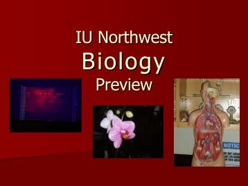 Biology Preview