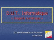 des DUT et LP informatique - IUT d'Arles