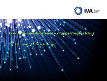 Studievejledningens oplæg - IVA
