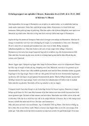 Erfaringsrapport - Brasov 2002 - IVA