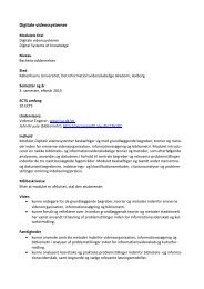 Digitale videnssystemer - IVA