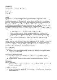 Modulets titel Kulturformidling – rum, roller og processer ECTS ... - Iva