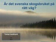 [PDF] Thomas Lundmark - IVA