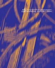 ANNUAL REPORT 2004 - IVA